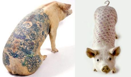 Artfarm_Pigs_Tattooed_Belgian_Artist_Wim_Delvoye1